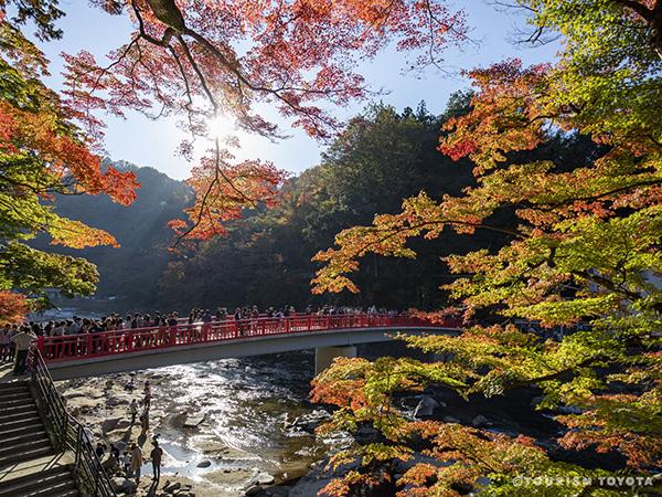 「香嵐渓」紅葉過去画像